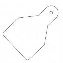 PLAIN ID WIDE FLAG TAGS (PACK OF 20) WHITE 100X65