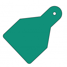 PLAIN ID WIDE FLAG TAGS (PACK OF 20) GREEN 100X65