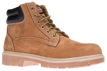 FA9001 Dickies Donegal Safety Boot