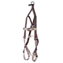 PIONEER 2-POINT RESCUE HARNESS JSP